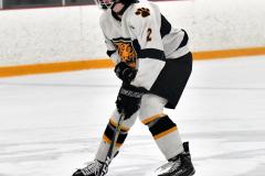 CIACT Ice Hockey D3 QFs; #1 Hand 5 vs. #8 Newtown 0 - Photo # 431