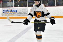 CIACT Ice Hockey D3 QFs; #1 Hand 5 vs. #8 Newtown 0 - Photo # 436