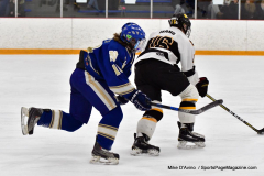 CIACT Ice Hockey D3 QFs; #1 Hand 5 vs. #8 Newtown 0 - Photo # 456