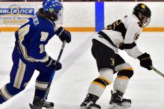 CIACT Ice Hockey D3 QFs; #1 Hand 5 vs. #8 Newtown 0 - Photo # 458