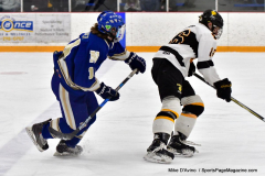 CIACT Ice Hockey D3 QFs; #1 Hand 5 vs. #8 Newtown 0 - Photo # 459