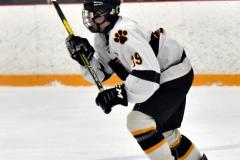 CIACT Ice Hockey D3 QFs; #1 Hand 5 vs. #8 Newtown 0 - Photo # 462
