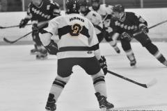 CIACT Ice Hockey D3 QFs; #1 Hand 5 vs. #8 Newtown 0 - Photo # 463