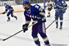 CIACT Ice Hockey D3 QFs; #1 Hand 5 vs. #8 Newtown 0 - Photo # 475