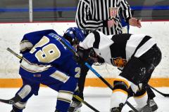 CIACT Ice Hockey D3 QFs; #1 Hand 5 vs. #8 Newtown 0 - Photo # 484