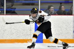 CIACT Ice Hockey D3 QFs; #1 Hand 5 vs. #8 Newtown 0 - Photo # 498
