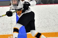 CIACT Ice Hockey D3 QFs; #1 Hand 5 vs. #8 Newtown 0 - Photo # 499
