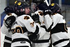CIACT Ice Hockey D3 QFs; #1 Hand 5 vs. #8 Newtown 0 - Photo # 512