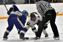 CIACT Ice Hockey D3 QFs; #1 Hand 5 vs. #8 Newtown 0 - Photo # 516