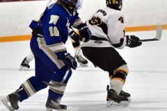 CIACT Ice Hockey D3 QFs; #1 Hand 5 vs. #8 Newtown 0 - Photo # 521