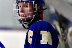 CIACT Ice Hockey D3 QFs; #1 Hand 5 vs. #8 Newtown 0 - Photo # 526