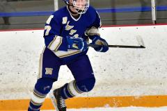 CIACT Ice Hockey D3 QFs; #1 Hand 5 vs. #8 Newtown 0 - Photo # 535