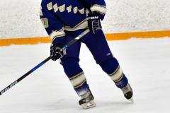 CIACT Ice Hockey D3 QFs; #1 Hand 5 vs. #8 Newtown 0 - Photo # 538