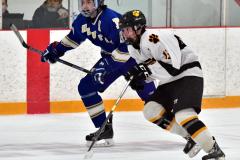 CIACT Ice Hockey D3 QFs; #1 Hand 5 vs. #8 Newtown 0 - Photo # 544