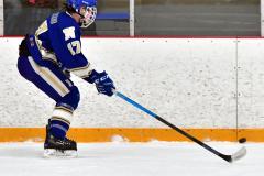 CIACT Ice Hockey D3 QFs; #1 Hand 5 vs. #8 Newtown 0 - Photo # 546