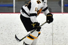 CIACT Ice Hockey D3 QFs; #1 Hand 5 vs. #8 Newtown 0 - Photo # 555