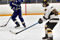 CIACT Ice Hockey D3 QFs; #1 Hand 5 vs. #8 Newtown 0 - Photo # 557