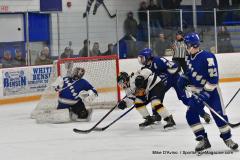 CIACT Ice Hockey D3 QFs; #1 Hand 5 vs. #8 Newtown 0 - Photo # 559