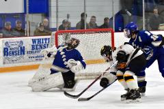 CIACT Ice Hockey D3 QFs; #1 Hand 5 vs. #8 Newtown 0 - Photo # 560