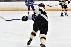 CIACT Ice Hockey D3 QFs; #1 Hand 5 vs. #8 Newtown 0 - Photo # 565