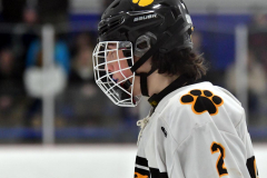 CIACT Ice Hockey D3 QFs; #1 Hand 5 vs. #8 Newtown 0 - Photo # 570