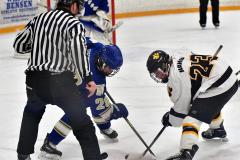 CIACT Ice Hockey D3 QFs; #1 Hand 5 vs. #8 Newtown 0 - Photo # 571