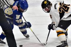CIACT Ice Hockey D3 QFs; #1 Hand 5 vs. #8 Newtown 0 - Photo # 572