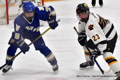 CIACT Ice Hockey D3 QFs; #1 Hand 5 vs. #8 Newtown 0 - Photo # 575