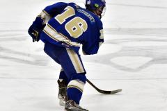 CIACT Ice Hockey D3 QFs; #1 Hand 5 vs. #8 Newtown 0 - Photo # 585