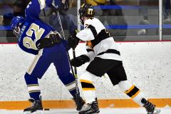 CIACT Ice Hockey D3 QFs; #1 Hand 5 vs. #8 Newtown 0 - Photo # 594