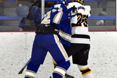 CIACT Ice Hockey D3 QFs; #1 Hand 5 vs. #8 Newtown 0 - Photo # 596