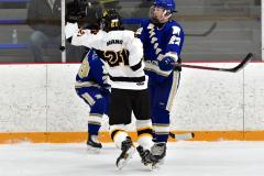 CIACT Ice Hockey D3 QFs; #1 Hand 5 vs. #8 Newtown 0 - Photo # 606