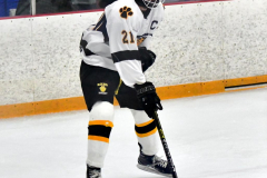 CIACT Ice Hockey D3 QFs; #1 Hand 5 vs. #8 Newtown 0 - Photo # 609