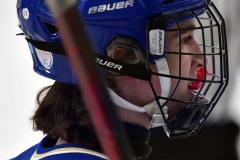CIACT Ice Hockey D3 QFs; #1 Hand 5 vs. #8 Newtown 0 - Photo # 613