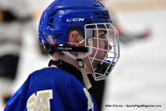 CIACT Ice Hockey D3 QFs; #1 Hand 5 vs. #8 Newtown 0 - Photo # 614