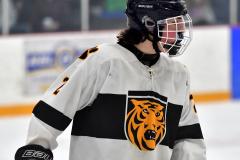 CIACT Ice Hockey D3 QFs; #1 Hand 5 vs. #8 Newtown 0 - Photo # 615