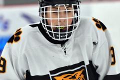 CIACT Ice Hockey D3 QFs; #1 Hand 5 vs. #8 Newtown 0 - Photo # 616