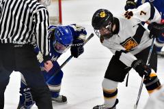 CIACT Ice Hockey D3 QFs; #1 Hand 5 vs. #8 Newtown 0 - Photo # 619
