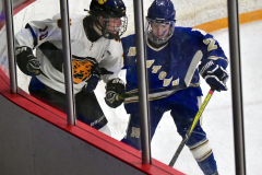 CIACT Ice Hockey D3 QFs; #1 Hand 5 vs. #8 Newtown 0 - Photo # 636