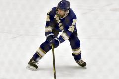 CIACT Ice Hockey D3 QFs; #1 Hand 5 vs. #8 Newtown 0 - Photo # 640