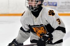 CIACT Ice Hockey D3 QFs; #1 Hand 5 vs. #8 Newtown 0 - Photo # 665