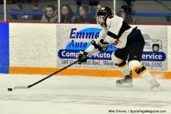 CIACT Ice Hockey D3 QFs; #1 Hand 5 vs. #8 Newtown 0 - Photo # 682
