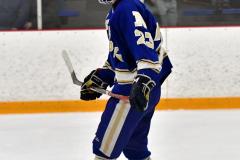 CIACT Ice Hockey D3 QFs; #1 Hand 5 vs. #8 Newtown 0 - Photo # 699