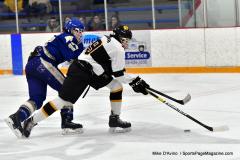 CIACT Ice Hockey D3 QFs; #1 Hand 5 vs. #8 Newtown 0 - Photo # 712