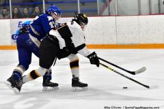 CIACT Ice Hockey D3 QFs; #1 Hand 5 vs. #8 Newtown 0 - Photo # 713