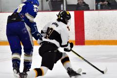CIACT Ice Hockey D3 QFs; #1 Hand 5 vs. #8 Newtown 0 - Photo # 714