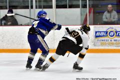 CIACT Ice Hockey D3 QFs; #1 Hand 5 vs. #8 Newtown 0 - Photo # 717