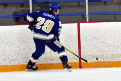 CIACT Ice Hockey D3 QFs; #1 Hand 5 vs. #8 Newtown 0 - Photo # 722