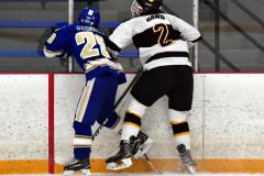CIACT Ice Hockey D3 QFs; #1 Hand 5 vs. #8 Newtown 0 - Photo # 724