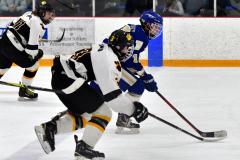 CIACT Ice Hockey D3 QFs; #1 Hand 5 vs. #8 Newtown 0 - Photo # 738